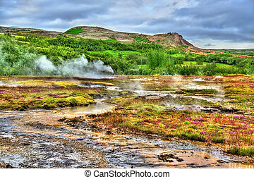 Geothermally active Haukadalur Valley in Iceland -...