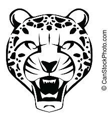 gepard, ansikte