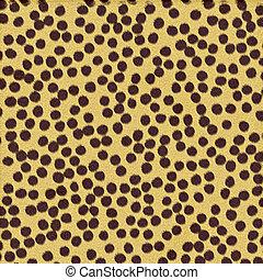 gepard, flecke