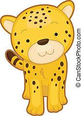 gepard, nárys