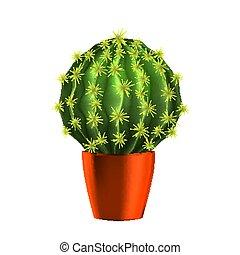 gepflanzt, orange, vektor, kaktus, saftig, topf
