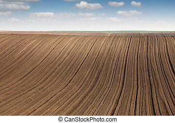geploegd gebied, in, lente, landbouw, landelijk landschap