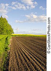 geploegde, boer veld, in, lente
