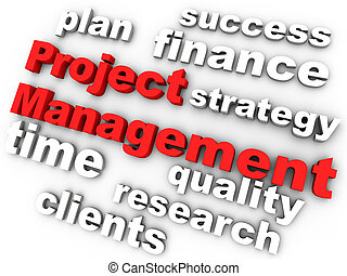 gerência, cercado, projeto, relevante, palavras, vermelho