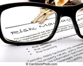 gerência, risco