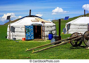 ger, キャンプ, 太陽, mongolian, 力