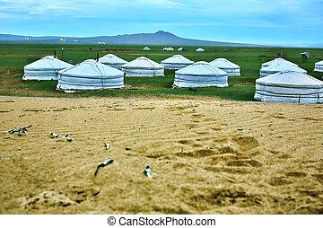 ger, 中央である, mongolian, mongolia