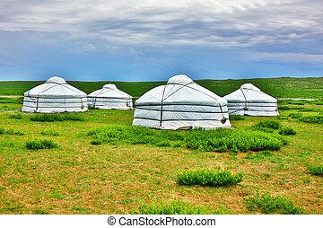 ger, campo, mongol, yurt