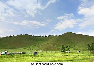 ger, gorkhi-terelj, 国民, キャンプ, 公園, mongolia, ulaanbaatar