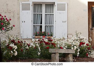 geranio, rose, fiori bianchi, finestra