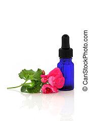 geranium, bloem, essentie