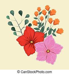 geranium flower decorative image