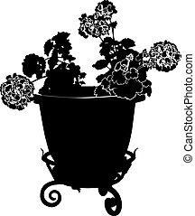 geranium flower in a pot