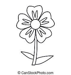 geranium flower natural outline