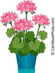 Geranium houseplant in flower pot. Vector icon on white...
