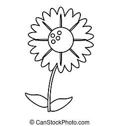 gerbera flower natural outline