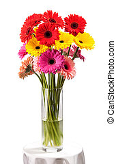 Gerbera flowers in vase isolated over white