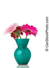 Gerbera. - Gerbera flower on the vase, isolated white ...