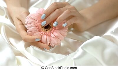 Gerbera in manicured hands, slow motion. Well-groomed hands...