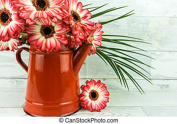 Gerbera in two colors with coffee pot on a rustic wooden table