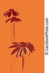 gerberas on the orange background