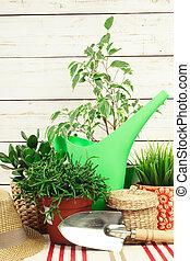 gereedschap, samenstelling, tuin