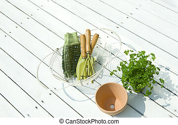gereedschap, tuinieren, peterselie, kiemplant