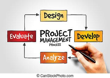 gerencia de proyecto