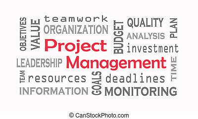 gerencia de proyecto, palabra, nube, concepto, blanco, fondo.