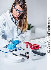 gerichtliche wissenschaft, experte, untersuchen, gegenstände, von, a, tatort