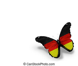 German flag butterfly, isolated on white background