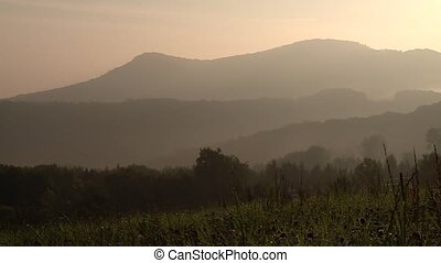 German Nature (Swabian Alb) in the morning with mountains -...