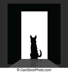 german shepard at the door silhouette