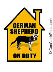 German Shepard.