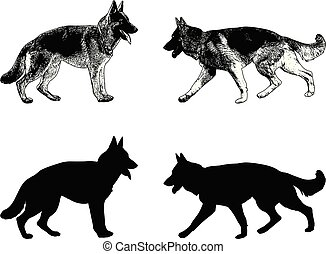 german shepherd dog silhouette and sketch