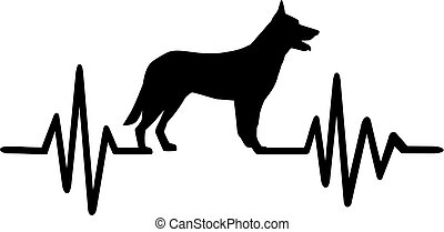 German Shepherd pulse - Heartbeat or pulse with German...