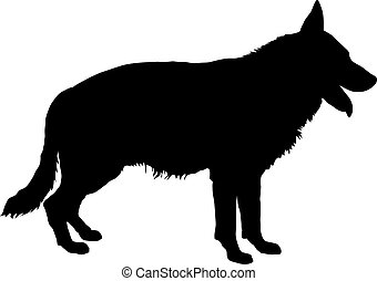 German Shepherd Silhouette - Vector silhouette of a purebred...