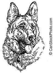 German shepherd vector hand drawing Illustration - German...