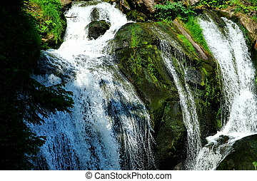 germany-15, bosque, negro,  triberg, cascadas