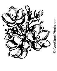 germogli, schizzo, blackly, primavera, tre, colori, bianco