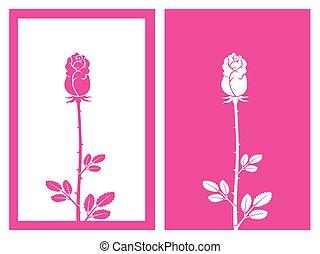 germoglio, vettore, rosa colore rosa