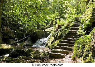 gertelbach, cachoeira, escadas