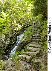 gertelbach, cascadas, bosque negro, piedra, escalera