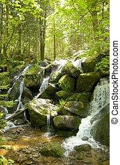 gertelbach, cascate