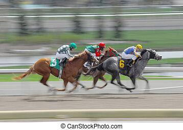 geschwindigkeitsüberschreitung, rennen, pferden