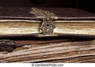 gesloten, in, haar, dagboek