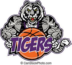 gespierd, tiger, met, basketbal