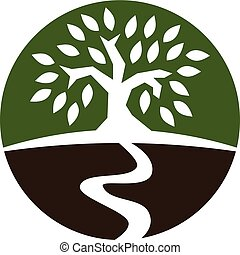 gestion, arbre, richesse