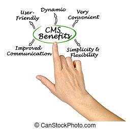 gestion, avantages, système, cms, contenu