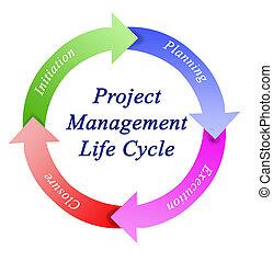gestion projet